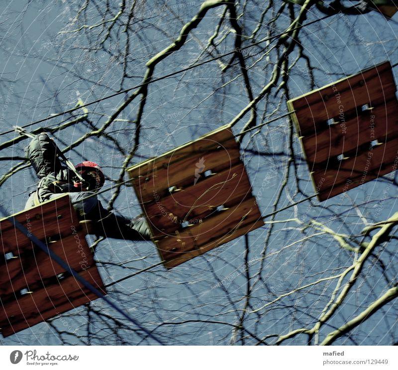 Run for your Life Himmel Baum Freude Sport Spielen gehen laufen hoch Klettern Mut Ereignisse Brücke Bergsteigen anstrengen Absicherung Drahtseil