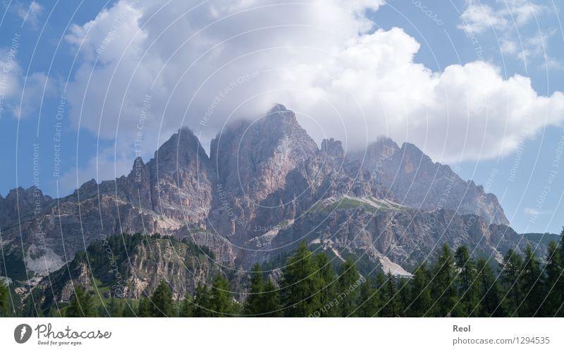 Monte Cristallo Natur Ferien & Urlaub & Reisen blau grün Sommer Landschaft Wolken Wald Berge u. Gebirge Umwelt grau Stein Felsen Tourismus Erde groß