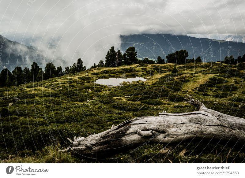 Karge Alpenlandschaft Himmel Natur Pflanze grün Sommer Wasser weiß Baum Landschaft Wolken Tier Berge u. Gebirge Umwelt gelb Frühling Wiese