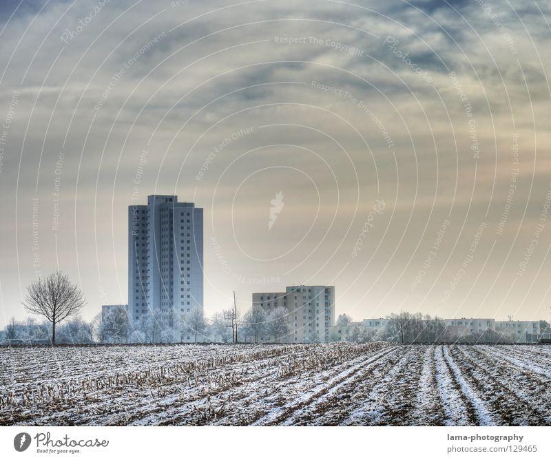 Suburbia II Natur Baum Stadt Winter Haus kalt Schnee Park Eis Feld Wohnung Umwelt Hochhaus Aussicht