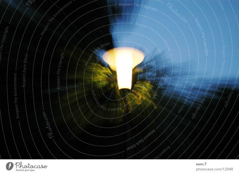 Ein Licht geht auf Baum Lampe Laterne erleuchten Zoomeffekt