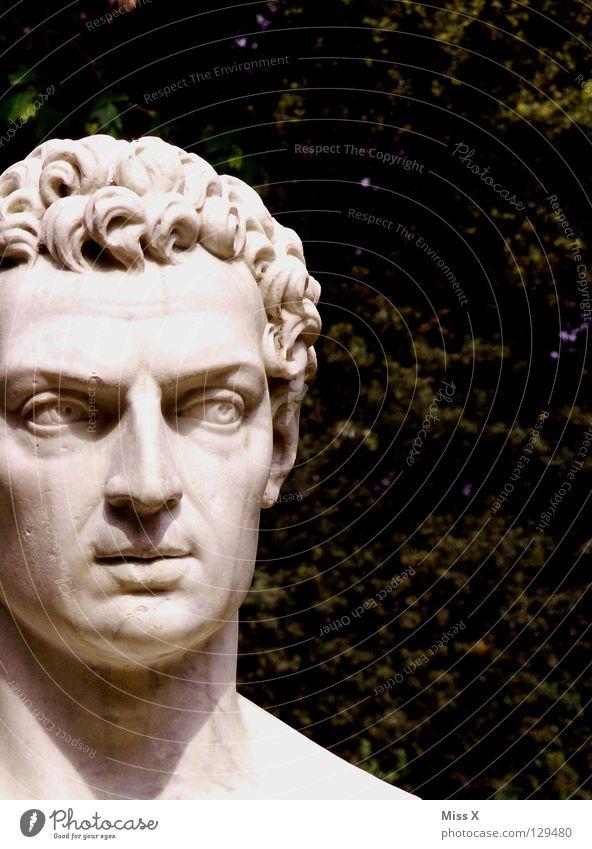 LEON BATTISTA ALBERTI Kopf Stein Park ästhetisch Denkmal Statue Skulptur Künstler Rom Marmor Italien Renaissance Büste