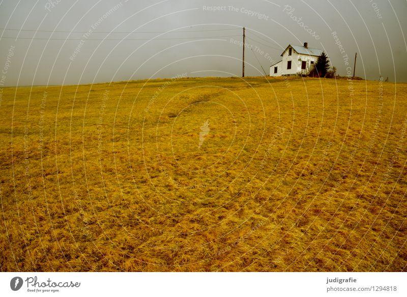 Island Natur Einsamkeit Landschaft ruhig Haus Ferne Umwelt Wiese Gras natürlich Gebäude klein Stimmung wild Häusliches Leben Idylle