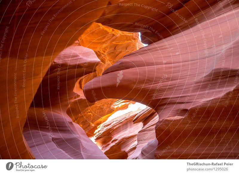 Eagle Umwelt Natur Landschaft Sand braun gelb grau orange schwarz Antelope Canyon USA Reisefotografie reiseziel destination Adler Strukturen & Formen Verlauf