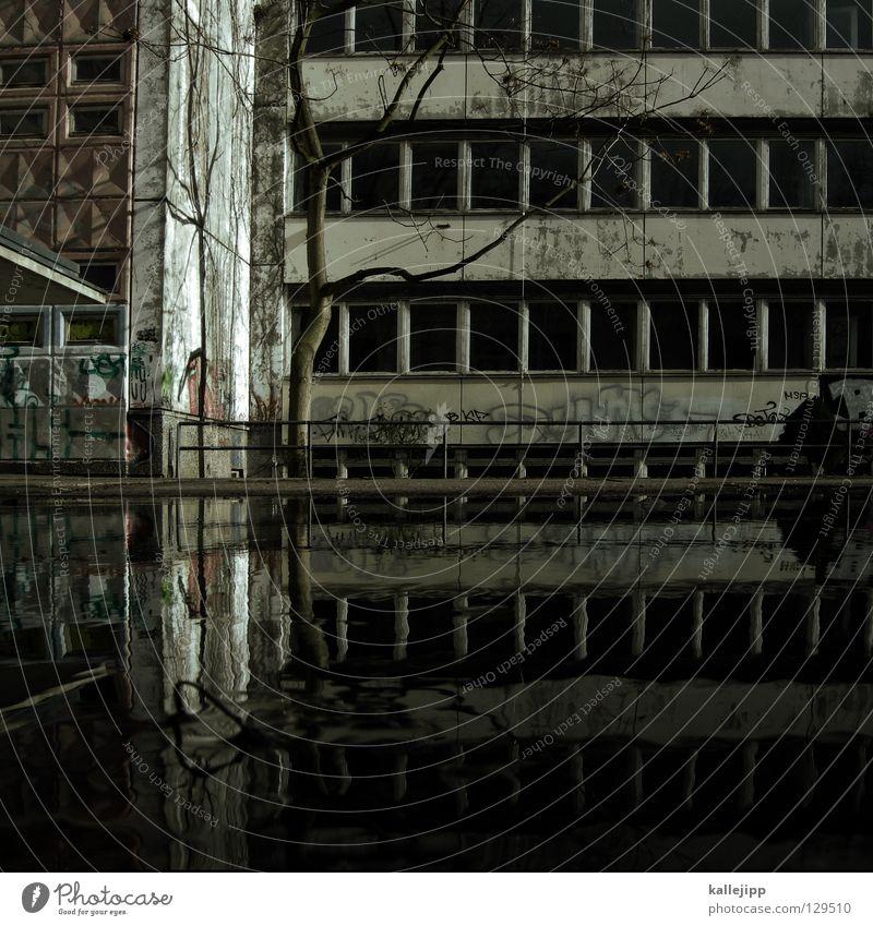 schulhof paralellwelten Wasser Pfütze Haus Fenster Reflexion & Spiegelung Plattenbau Sozialer Brennpunkt Baum Pause Ferien & Urlaub & Reisen leer Klassenraum