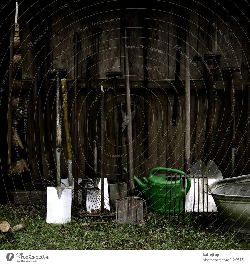 gartenabteilung Werkzeug Spaten Gartenarbeit Forke Schaufel Stahl Eisen Holz Arbeit & Erwerbstätigkeit Gärtner Gras grün Garage Evolution Scheune gartenwerkzeug