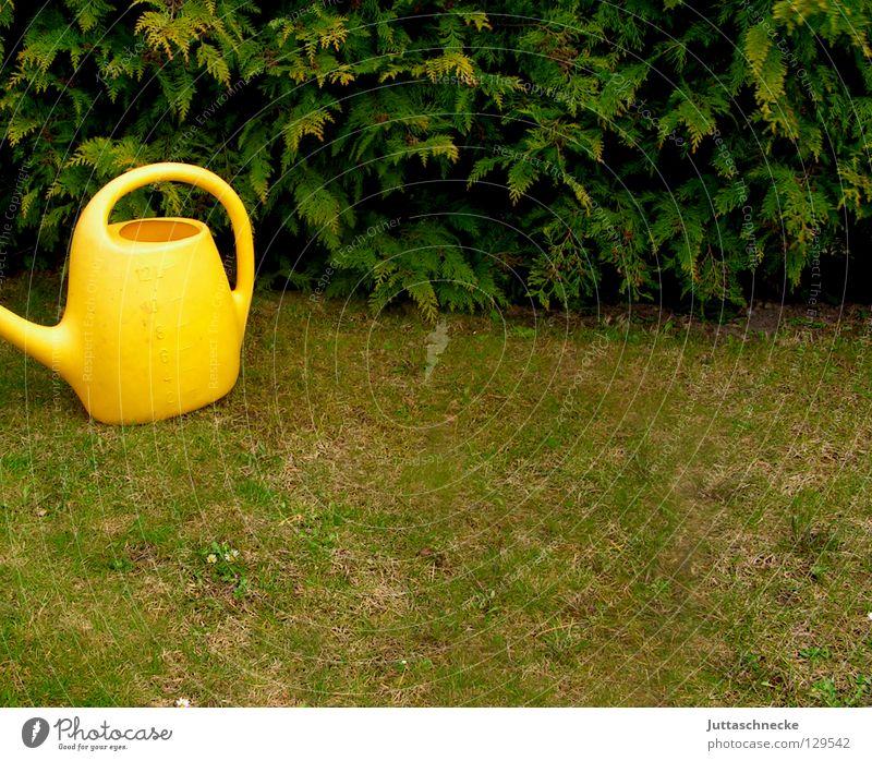 Kann die Kanne...? Wasser Blume grün gelb Arbeit & Erwerbstätigkeit Gras Frühling Garten Park Freizeit & Hobby Statue Kunststoff Griff Hecke gießen Gartenarbeit