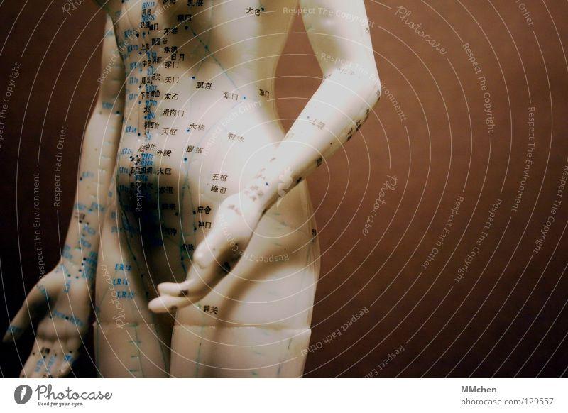"""""""Tor des schlüpfrigen Fleisches"""" Akupunktur Chinesisch Schriftzeichen weiß braun Hand Orientierung Yin und Yang alternativ Krankheit Heilung Gesundheit Muster"""