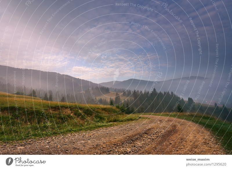 Morgen in Pilipets Himmel Natur blau grün Sommer Baum Erholung Landschaft Wolken Wald gelb Leben Wiese natürlich Holz Kunst