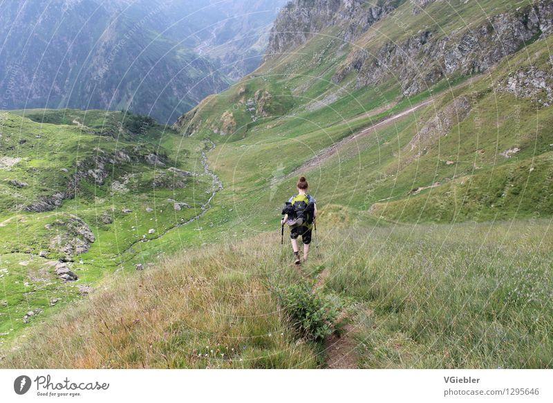 downhills sportlich Freizeit & Hobby Ferien & Urlaub & Reisen Sommer Sport Mensch Junge Frau Jugendliche Leben 1 Umwelt Natur Landschaft Pflanze Erde Gras