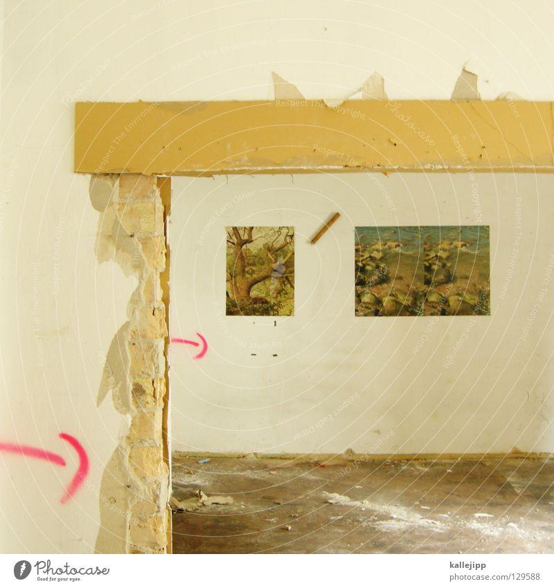 darf ich das behalten? Natur alt Baum Sommer Blatt Haus Landschaft Wand Stein Arbeit & Erwerbstätigkeit Wohnung Energiewirtschaft Erfolg Wachstum kaputt Elektrizität