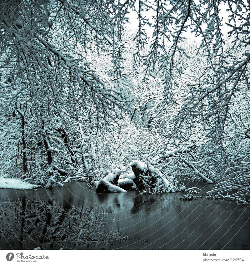 Ersatzwinter weiß Winter kalt Schnee See Eis Frost gefroren