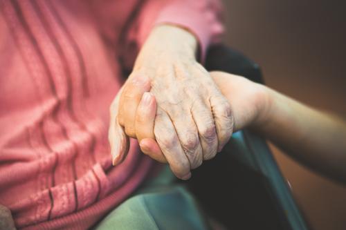 Fürsorge. Gesundheit Seniorenpflege Krankenpflege Mensch Weiblicher Senior Frau Männlicher Senior Mann Großeltern Großvater Großmutter Familie & Verwandtschaft
