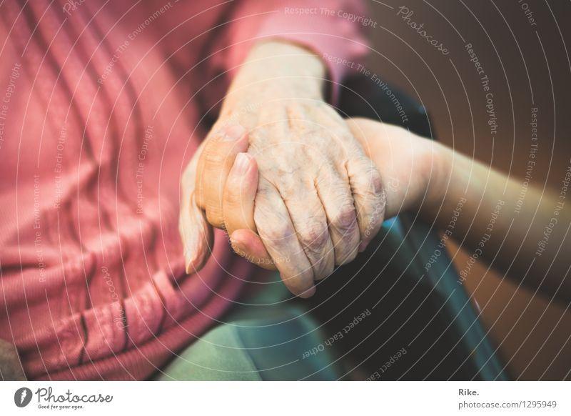 Fürsorge. Mensch Frau Mann alt Hand Leben Senior Gesundheit Familie & Verwandtschaft Zusammensein 60 und älter Hilfsbereitschaft berühren Schutz Sicherheit