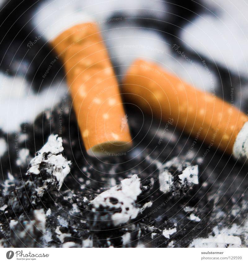 Raucherpause Ernährung gefährlich Pause bedrohlich Rauchen Quadrat Zigarette Brandasche Filter Krebstier Aschenbecher Rauchen verboten Zigarettenstummel