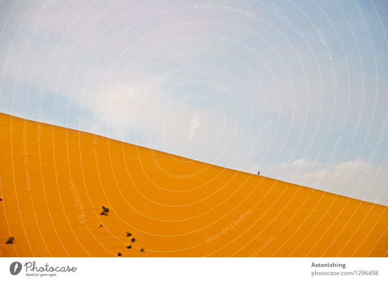 kleiner Mann auf großer Sanddüne Mensch Himmel Natur Pflanze blau Sommer Landschaft Umwelt Wärme Gras braun Horizont Wetter Erde