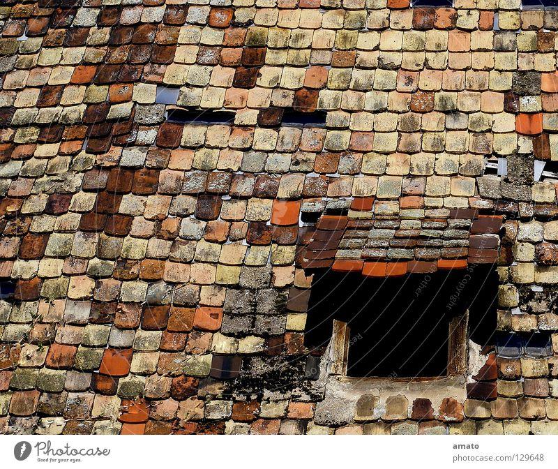 Dachkandl Dachziegel Mansarde Bauernhof Scheune Altbau rot braun schwarz Farbe