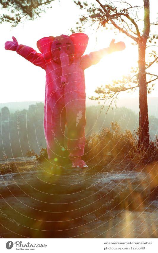 Törötötööö! Kunst Kunstwerk Abenteuer ästhetisch Elefant rosa Freude spaßig Spaßvogel Spaßgesellschaft Natur dumm verrückt finden Überraschung Kostüm Karneval