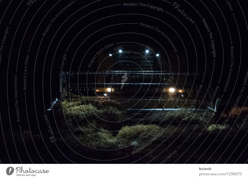Mähdrescher Nachtarbeit Arbeit & Erwerbstätigkeit Landwirt Feld Landwirtschaft Forstwirtschaft Umwelt Landschaft Sommer Getreide Getreideernte Seester Elsmhorn