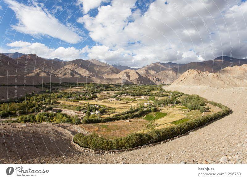 Lehnsucht Umwelt Landschaft Erde Wolken Sommer Schönes Wetter Gipfel blau braun Ehrlichkeit Ladakh Indien Nordindien Himalaya Berge u. Gebirge Bewässerung
