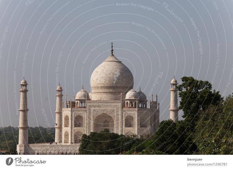 Taj Ferien & Urlaub & Reisen schön Sommer weiß Reisefotografie Architektur Liebe Kunst ästhetisch Bauwerk Wahrzeichen Denkmal harmonisch Sehenswürdigkeit Indien Kunstwerk