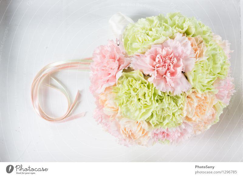 SommerinBlumen Pflanze Blüte einfach hell schön weich mehrfarbig grün orange rosa weiß Stil Blumenstrauß Hochzeit Stillleben Farbfoto Studioaufnahme