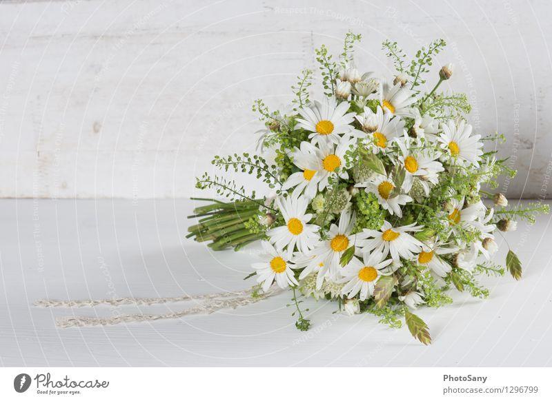 Wildblumen-Strauss II Blume Blüte hell schön natürlich gelb grün weiß Blumenstrauß Margerite Hochzeit altehrwürdig Farbfoto Innenaufnahme Textfreiraum links