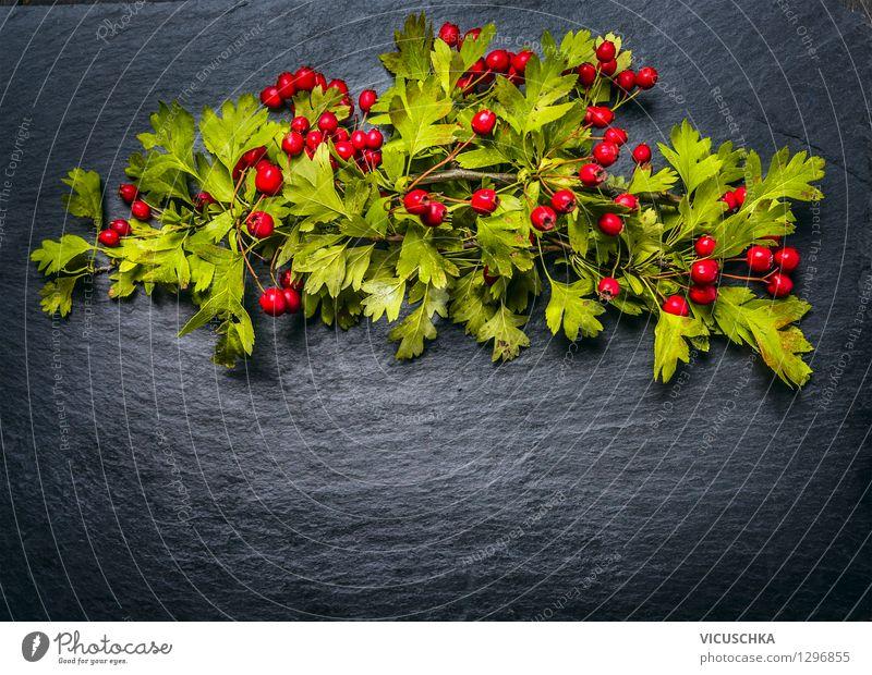 Herbst Hintergrund mit roten Weißdorn Beeren Stil Design Alternativmedizin Sommer Garten Innenarchitektur Dekoration & Verzierung Tisch Natur Pflanze
