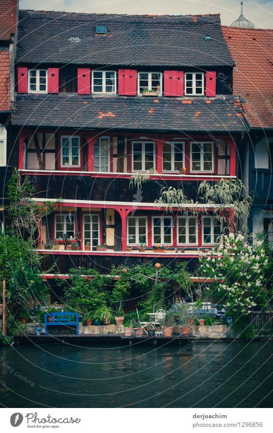 Flussidylle Design Erholung Ausflug Sommer Traumhaus Schönes Wetter Grünpflanze Flussufer Bamberg Bayern Deutschland Altstadt Fassade Terrasse Haus Holz