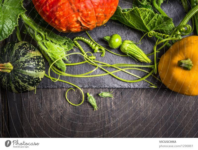 Bunte Kürbisse auf dunklem Holztisch Natur Gesunde Ernährung Haus dunkel gelb Leben Herbst Stil Hintergrundbild Feste & Feiern Garten Lebensmittel Design