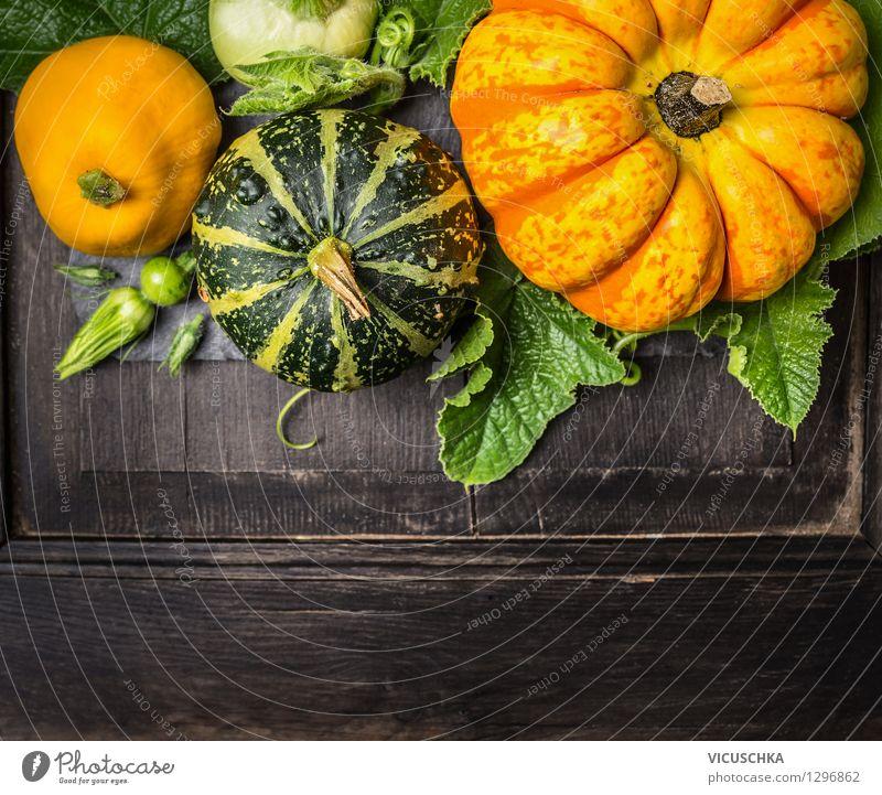 Kürbis Ernte auf dunklem Holztisch Natur Pflanze Sommer Gesunde Ernährung gelb Leben Stil Hintergrundbild Foodfotografie Feste & Feiern Garten Lebensmittel