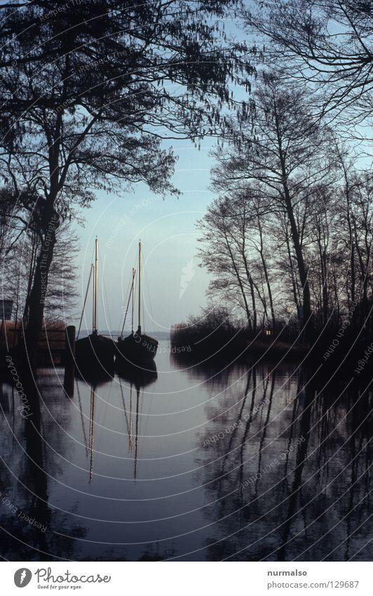 Stiller Morgen am See Natur Wasser Einsamkeit ruhig Gefühle See Stimmung Wasserfahrzeug paarweise Ast Klarheit einfach Hafen Spiegel Bucht analog