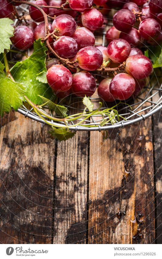 Frische Weintrauben Ernte Natur Gesunde Ernährung Blatt Leben Stil Hintergrundbild Lebensmittel rosa Design Frucht Ernährung Tisch Rose Bioprodukte Ernte Frühstück
