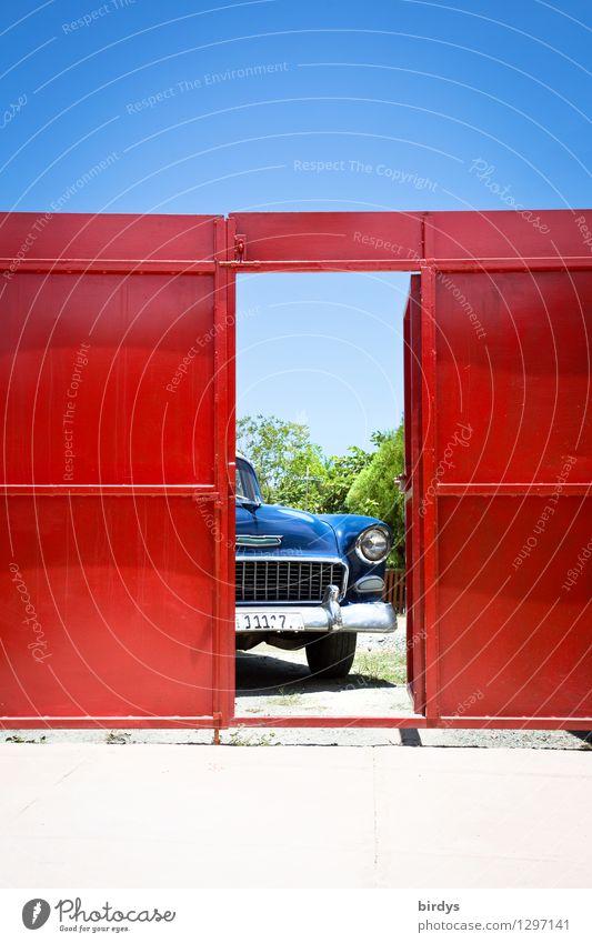 Colors of Cuba Ferien & Urlaub & Reisen blau schön weiß rot Senior außergewöhnlich Freiheit Lifestyle Design PKW Tür ästhetisch Kultur Schönes Wetter Güterverkehr & Logistik