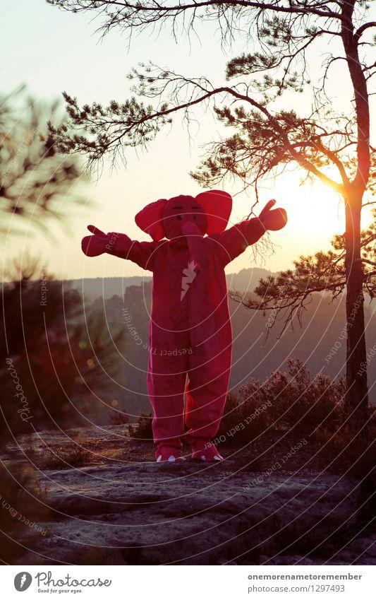 hug me if you can Kunst Kunstwerk ästhetisch Elefant rosa Umarmen Felsen Baum Sonnenstrahlen Ohr Freundlichkeit Freude spaßig Spaßvogel Spaßgesellschaft lustig