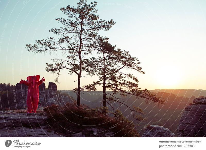 Trötötötööö 555! Kunst Abenteuer Freude spaßig Spaßvogel Spaßgesellschaft Elefant Natur Felsen Sächsische Schweiz Baum Ferne Kostüm lustig Unsinn Jugendkultur