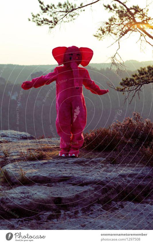 Dancing Queen Wasser Freude lustig Spielen Kunst fliegen Felsen rosa ästhetisch Tanzen Tanzveranstaltung Ohr Karneval Kunstwerk Karnevalskostüm Elefant