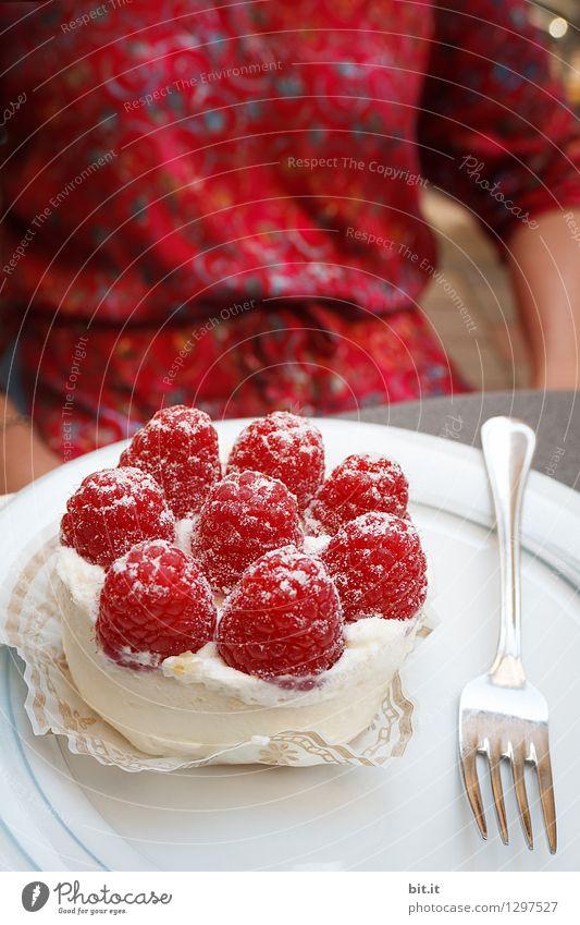 Bimbamberg |... gegessen haben wir auch... Frau Ferien & Urlaub & Reisen Einsamkeit Gesunde Ernährung Erwachsene Senior Essen Gesundheit Glück Feste & Feiern