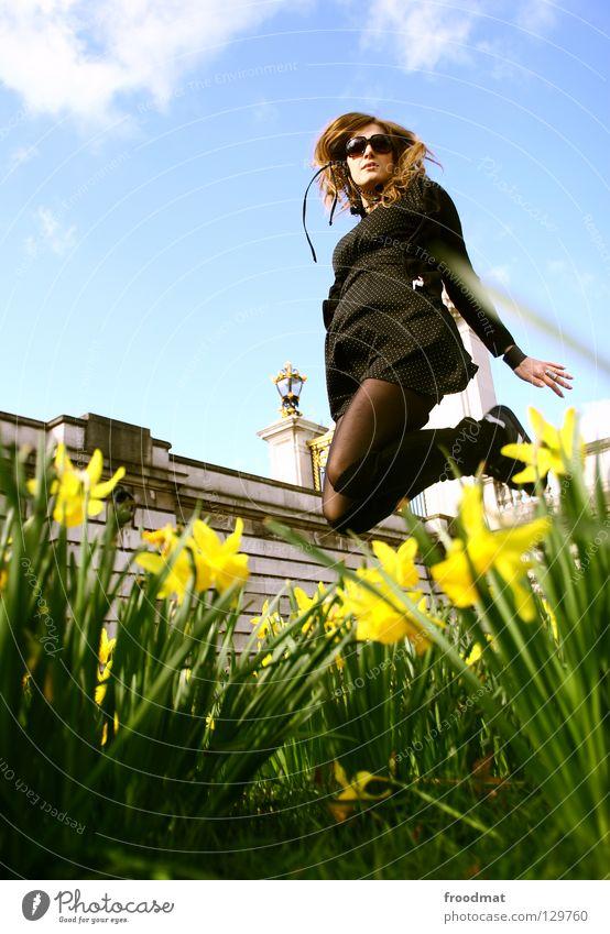 pseudonarcissus Blume Wiese springen Wolken Frühling blenden Idylle Jugendliche himmlisch schön wach Übermut Aktion Luft gefroren Gras grün Physik genießen