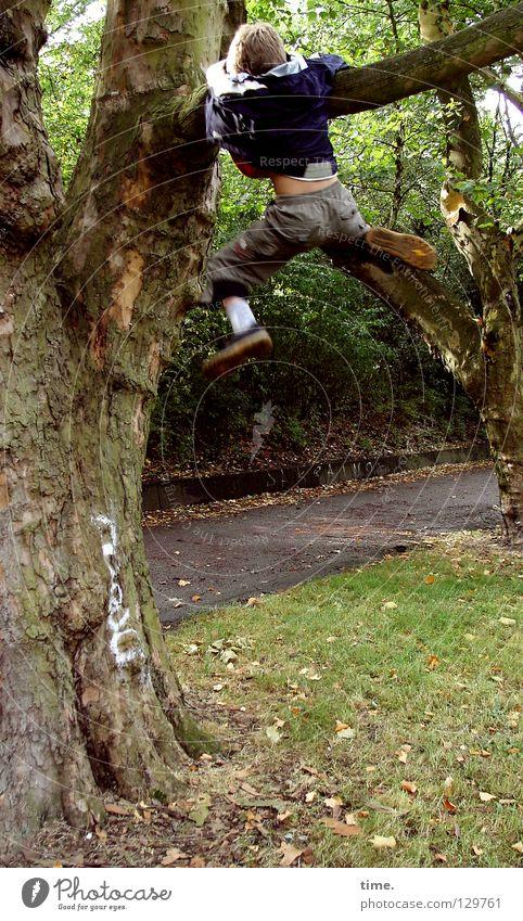 Junger Baumwanderer (II) Kind Garten Park Arbeit & Erwerbstätigkeit Ast Klettern anstrengen fertig transpirieren Extremsport Gartenweg