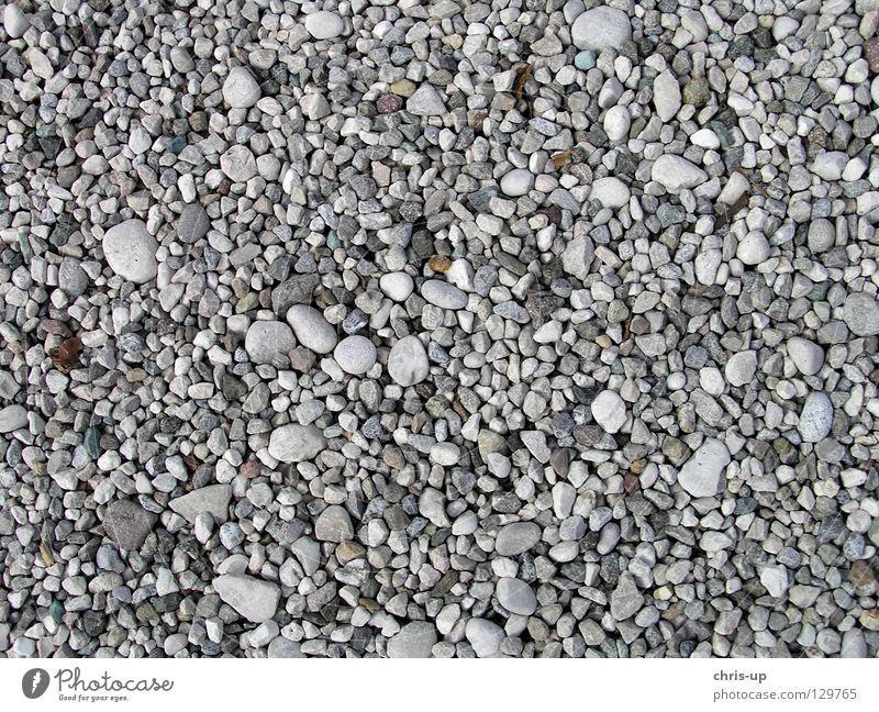 Kies Textur Kieselsteine Hintergrundbild Strukturen & Formen Korn Sandkorn weiß braun grau schwarz Strand Steinboden Erde Makroaufnahme Nahaufnahme Mineralien
