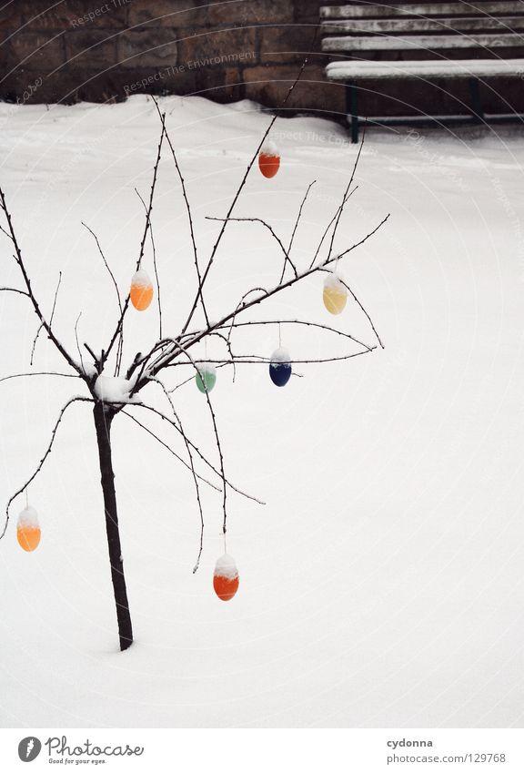 Ostern in Weiß I weiß kalt außergewöhnlich Haus mehrfarbig verschönern Suche Winter Frühling Jahreszeiten Wetter Zaun Vorgarten entdecken seltsam Mangel ruhig