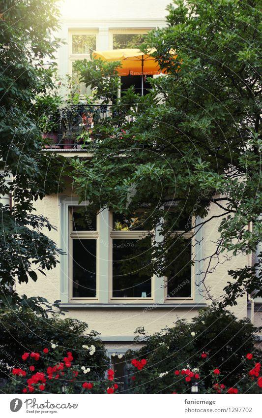 Platz an der Sonne Lifestyle Wellness Häusliches Leben Wohnung Haus Traumhaus Garten Erholung Sonnenplatz Sonnenschirm gelb Baum Schatten Fenster Balkon