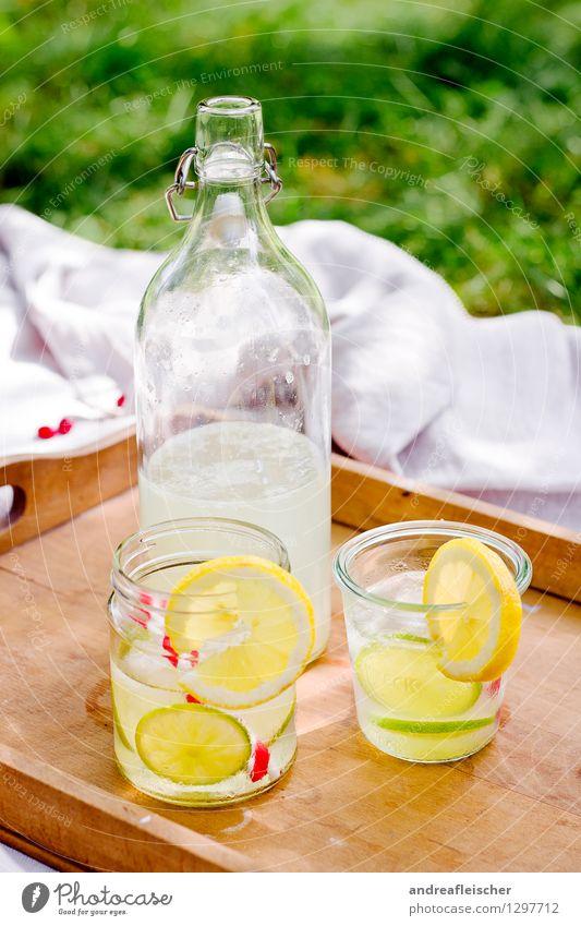 Sommerpicknick Erholung Ferien & Urlaub & Reisen Ausflug Natur Frühling Gras Garten Park Wiese ästhetisch Picknick Tablett Glasflasche Trinkhalm Limonade