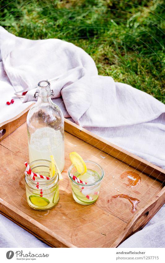 Sommerpicknick Erholung Ausflug Freiheit trinken Natur Frühling Schönes Wetter Garten Park Wiese ästhetisch braun mehrfarbig gelb grün rot weiß Picknick