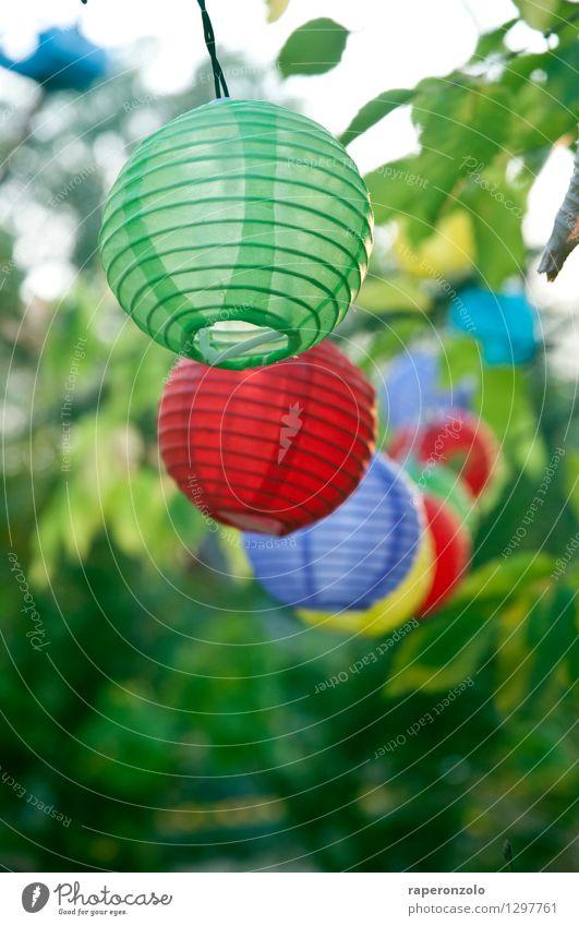 Poppig Freude Garten Feste & Feiern Geburtstag leuchten blau grün violett rot Fröhlichkeit Zusammensein Lebensfreude Leichtigkeit Sommer Party Lampion