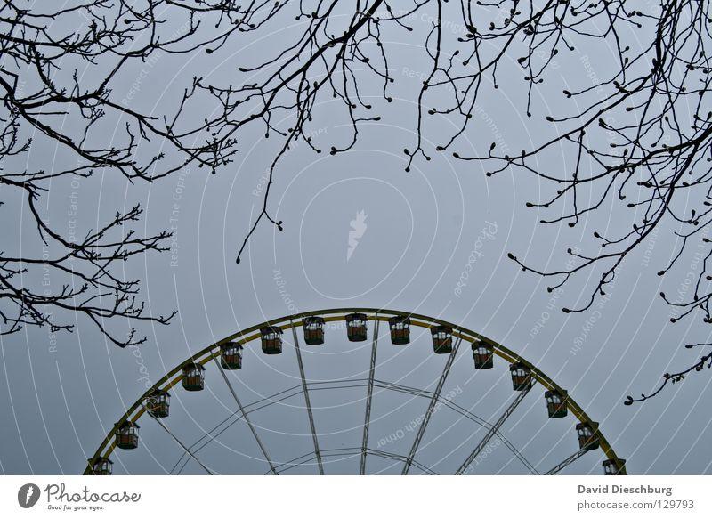 Auf dem Weg zum Rad Himmel blau Baum Freude schwarz Gefühle Angst groß hoch Kreis Macht rund Romantik Ast Niveau Müll