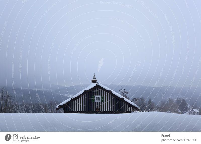 Abkühlung... Winter Haus Himmel Nebel Schnee Wald Fenster Dach Schornstein Fensterladen Holz Herz Klima geduckt Farbfoto Außenaufnahme Textfreiraum oben