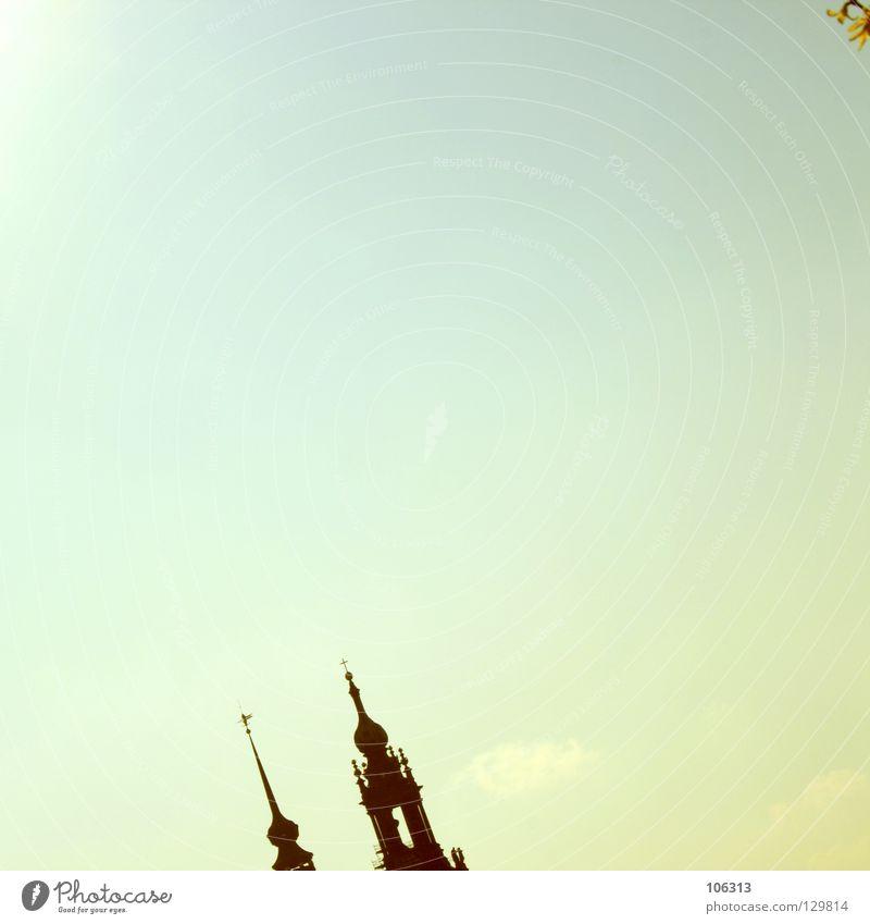 DRESDEN.LOVE Dresden Bauwerk historisch Blume Forsithie krumm Himmel Sommer Sonne Religion & Glaube Elbe Barock viel himmel Spitze