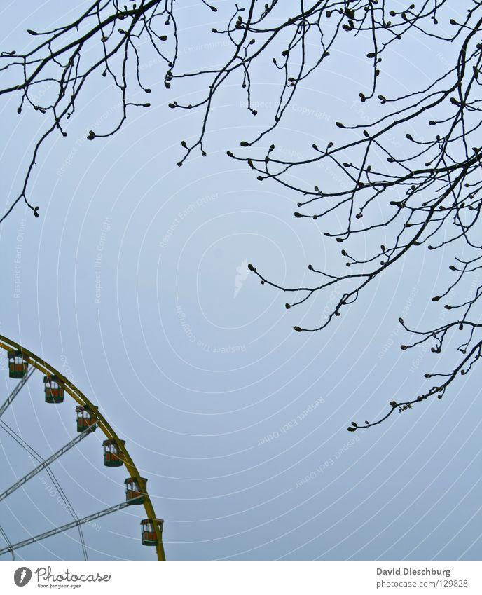 Auf dem Weg zum Rad II Himmel blau Baum Freude schwarz Gefühle Frühling Angst groß hoch Kreis Macht rund Romantik Ast Niveau